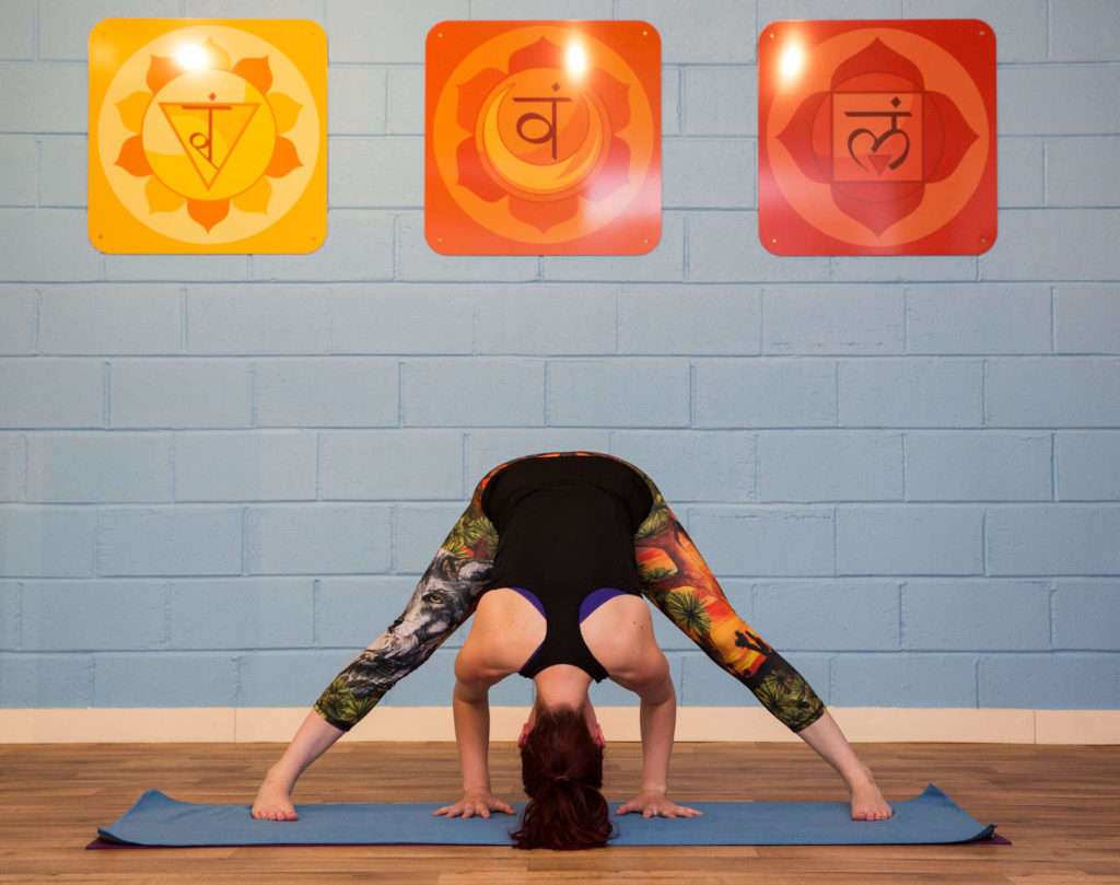 Sinead in Prasarita Padottanasana, hands central with arms at right angles. Background of Chakra wall prints and blue studio wall.