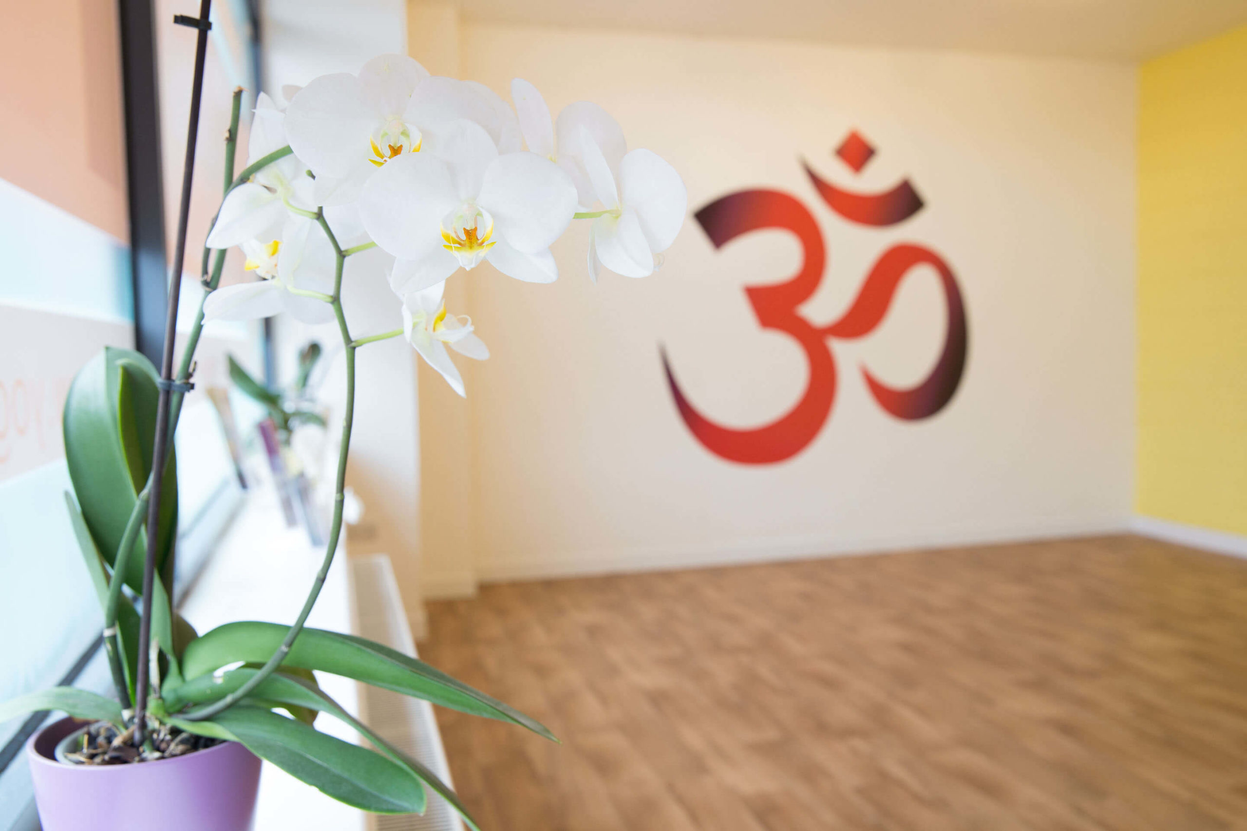 An extra layer of safety at Yogafurie with Anti Microbial Protection Coatings