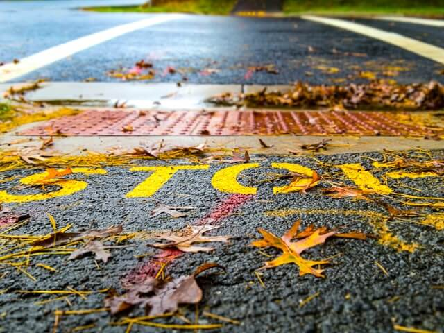 Stop sign painted on road, covered by autumn leaves. Photo by Obi Onyeador on Unsplash